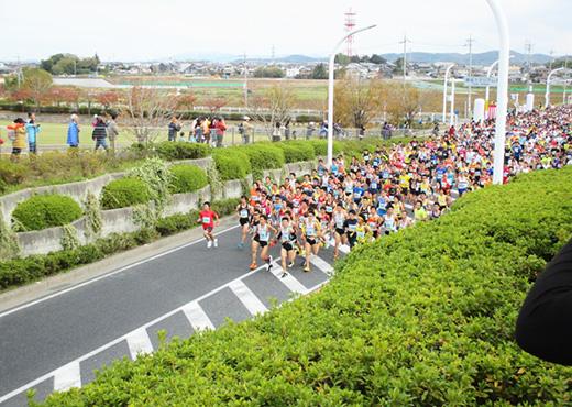 第35回豊田マラソン大会の写真